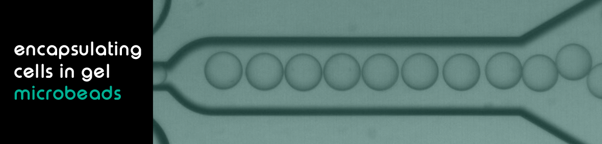 Encapsulating cells in gel microbeads