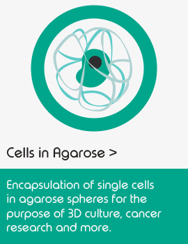 Single cell sequencing applications _agarose