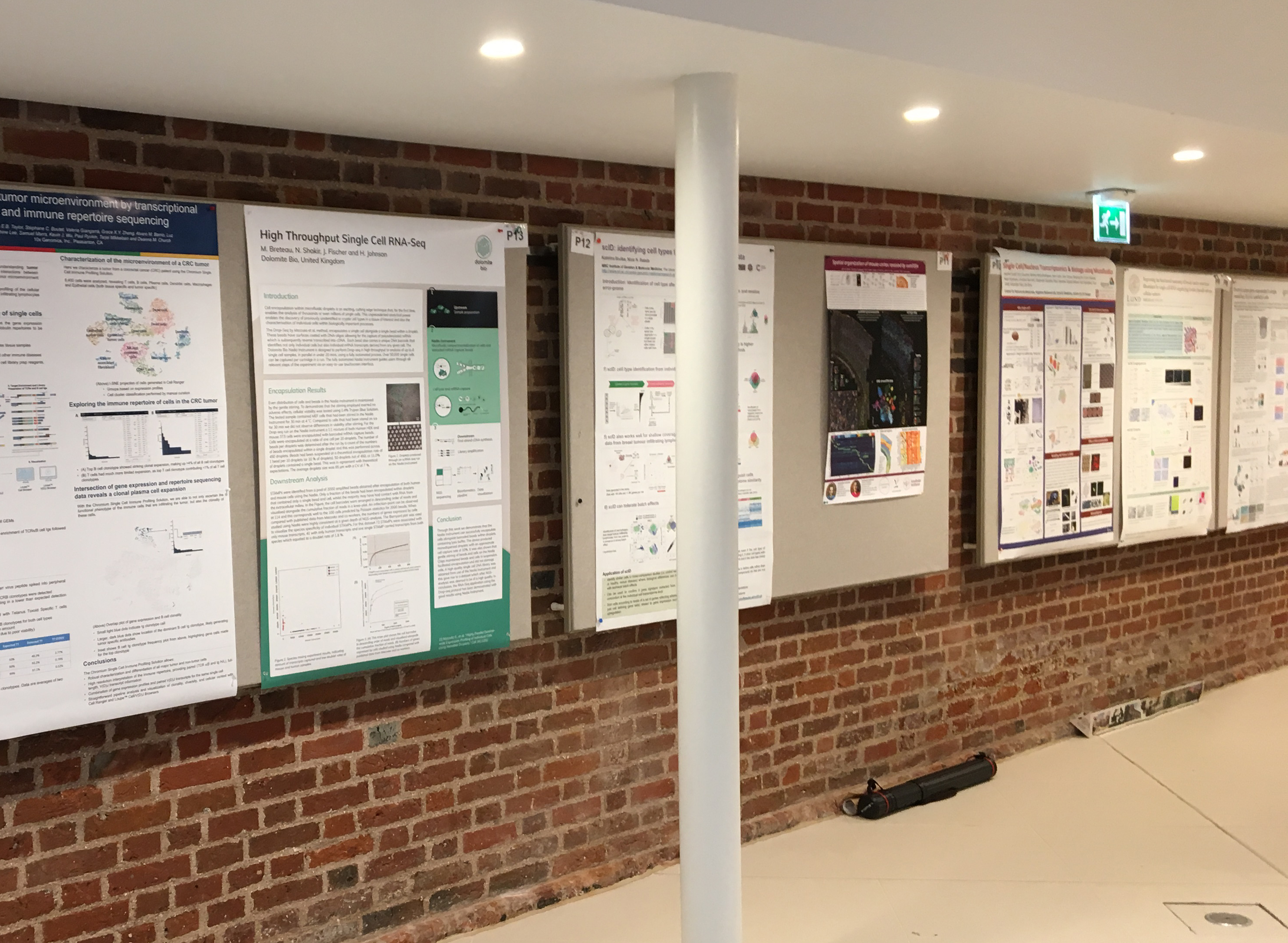 Single Cell Biology conference in Cambridge – wrap up and Dolomite Bio's scientific poster